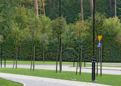 plyta-chodnikowa-35x35-producent-Superbruk-przykladowa-realizacja-alejka-park