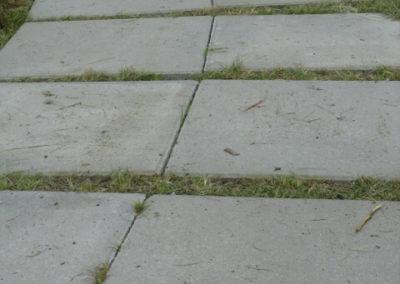 plyta-chodnikowa-50x50-producent-Superbruk-Bialystok-realizacja-sciezka-w-trawie-1